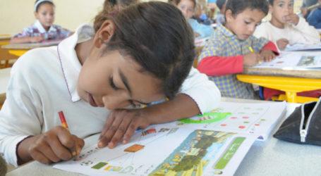 تعليم: البنك الدولي يحشر أنفه من جديد