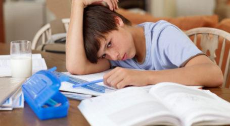 كيف نجعل من الواجبات المدرسية لحظة بناءة