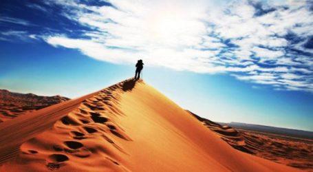 """علامة """"المغرب"""": شعار جديد في يناير المقبل"""