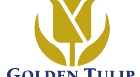 فنادق: 2017 بدون Golden Tulip