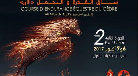 معرض الفرس للجديدة ينظم الدورة الثانية لسباق القدرة والتحمل للخيل بغابات الأرز بالأطلس المتوسط