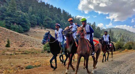 معرض الفرس يتوج الفائزين بالدورة الثانية لسباق القدرة والتحمل للخيل بغابات الأرز بالأطلس المتوسط