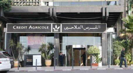 القرض الفلاحي للمغرب يتعبئ لدعم فلاحي جهة فاس مكناس