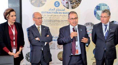 كوسومار توفر التقاعد والتغطية الصحية لمنتجي النباتات السكرية بالمغرب