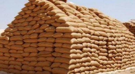 حجز 900 طن من القمح الفاسد كانت موجهة للاستهلاك في رمضان